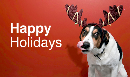 Happy Holidays from Dog | The Blue Collar Foodie