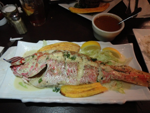 Red Snapper With Garlic Sauce